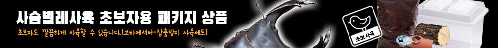 사슴벌레사육 초보자용 패키지 상품